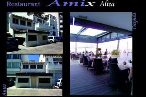 Amix 1